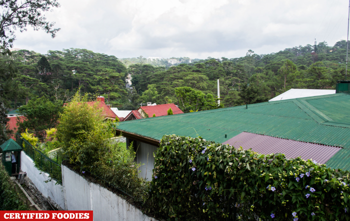 View at Hotel Balcony in Azalea Baguio